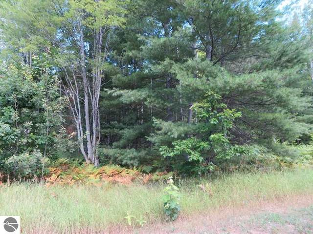 2215 NE Driftwood, Kalkaska, MI 49646 (MLS #1879432) :: Michigan LifeStyle Homes Group