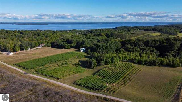 5200 Elm Valley Road, Suttons Bay, MI 49682 (MLS #1879861) :: Team Dakoske | RE/MAX Bayshore