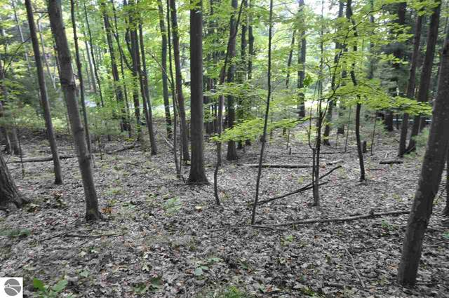 4 Loggers Run Subdivision, Glen Arbor, MI 49636 (MLS #1880038) :: Brick & Corbett
