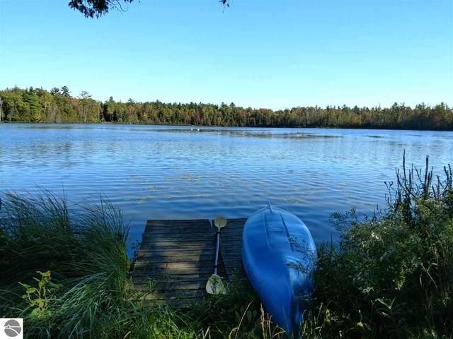 11742 Lake Shore Drive, Fife Lake, MI 49633 (MLS #1880169) :: Brick & Corbett