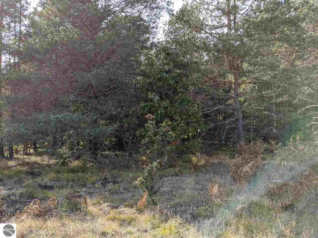210 Acres 39 Road, Cadillac, MI 49601 (MLS #1880259) :: Brick & Corbett