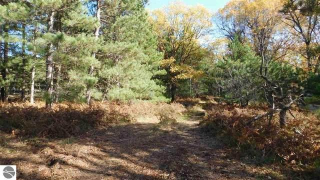 80 Acres Yellow Gate Trail, Hubbard Lake, MI 49474 (MLS #1881038) :: Michigan LifeStyle Homes Group