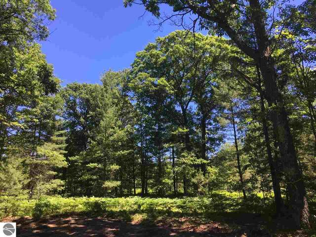 lot 10 Supply Road, Traverse City, MI 49696 (MLS #1881119) :: Brick & Corbett
