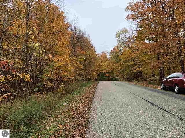 Ritt Road, Bellaire, MI 49615 (MLS #1881331) :: Brick & Corbett
