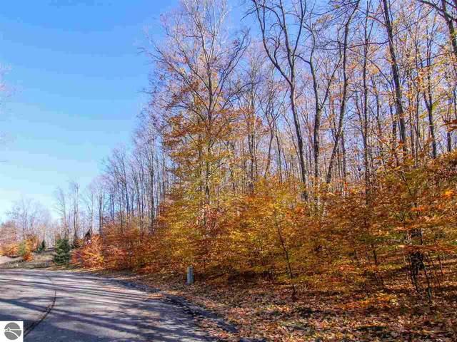 000 - #30 Beech Tree Trail, Thompsonville, MI 49684 (MLS #1881700) :: Brick & Corbett