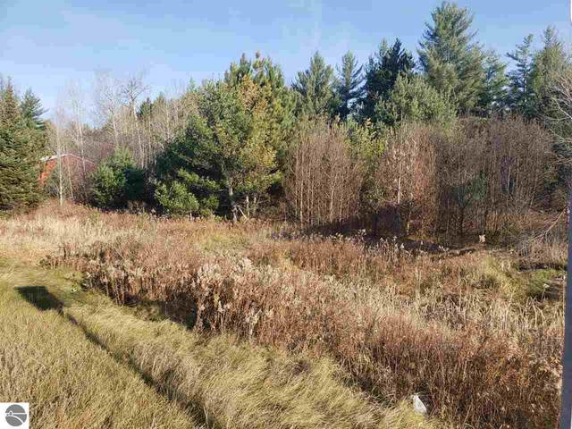 XXX W Federal Highway, Roscommon, MI 48653 (MLS #1881841) :: Michigan LifeStyle Homes Group