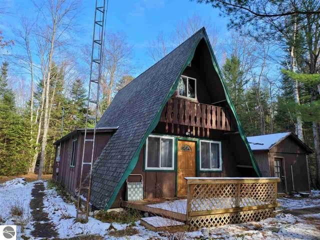 10761 Mohawk Trail, Roscommon, MI 48653 (MLS #1881883) :: Team Dakoske   RE/MAX Bayshore