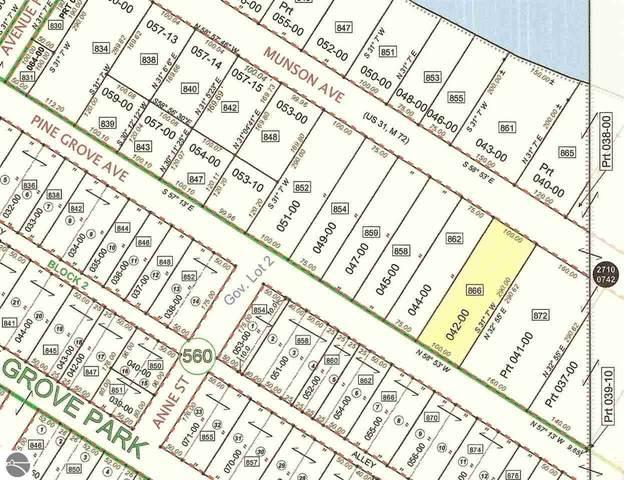 866 Munson Avenue, Traverse City, MI 49686 (MLS #1882318) :: Team Dakoske | RE/MAX Bayshore