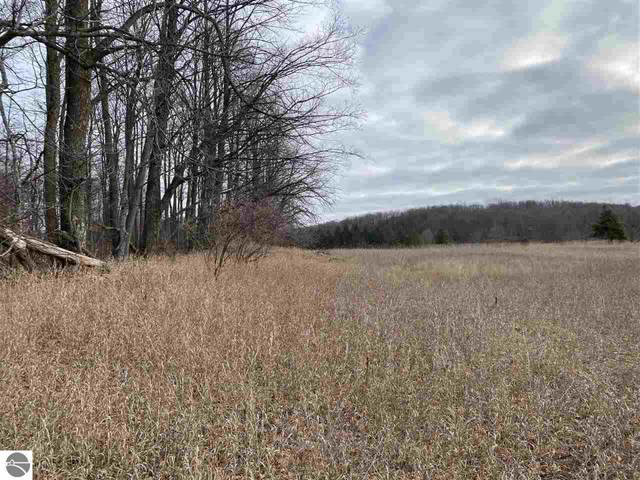 Lot 32 Troon North, Bellaire, MI 49615 (MLS #1882765) :: Boerma Realty, LLC