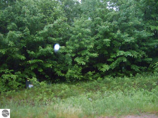 00 W Blue Road, Lake City, MI 49651 (MLS #1882914) :: Boerma Realty, LLC