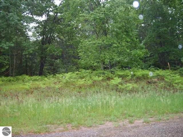 00 W Blue Road, Lake City, MI 49651 (MLS #1882916) :: Boerma Realty, LLC