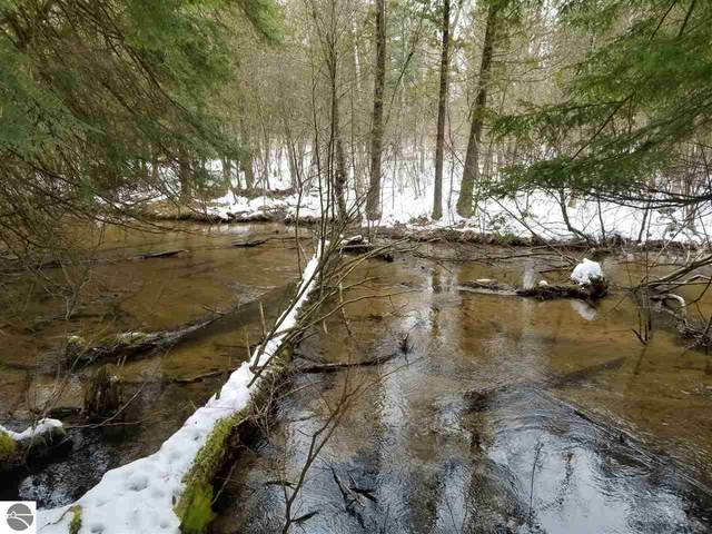 22 Acres Nessen Road, Thompsonville, MI 49683 (MLS #1883213) :: CENTURY 21 Northland