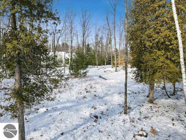 33 Pine Trace, Glen Arbor, MI 49636 (MLS #1884195) :: Michigan LifeStyle Homes Group