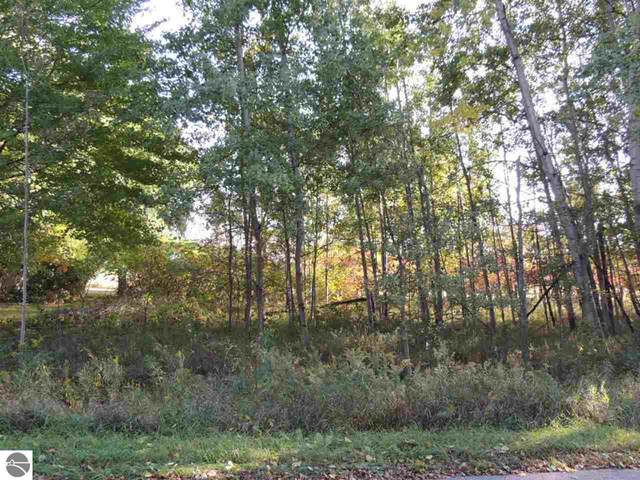 1055 Circle, Lake Isabella, MI 48893 (MLS #1885349) :: Boerma Realty, LLC