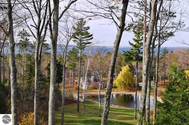 20D Brook Hill, Glen Arbor, MI 49636 (MLS #1885991) :: CENTURY 21 Northland