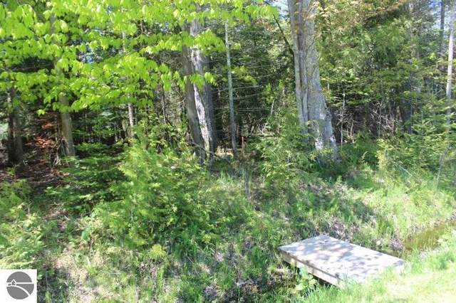 Lot 266 N Forest Beach Shores, Northport, MI 49670 (MLS #1886725) :: Team Dakoske | RE/MAX Bayshore