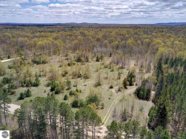 Lot D Northwoods Drive, Benzonia, MI 49616 (MLS #1887156) :: Boerma Realty, LLC