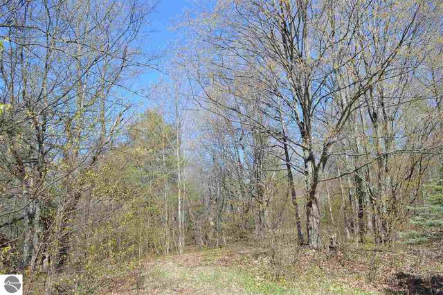 3873 W Bear Lake Road, Kalkaska, MI 49646 (MLS #1887338) :: Michigan LifeStyle Homes Group