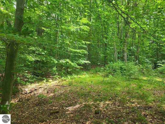 112 Logging Trail, Leroy, MI 49655 (MLS #1888813) :: Brick & Corbett