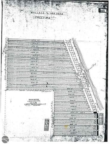 NKA 2nd Street, Au Gres, MI 48703 (MLS #1889572) :: Team Dakoske   RE/MAX Bayshore