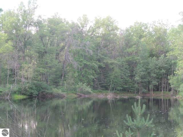 Lot 24 Pond Side Drive, Farwell, MI 48622 (MLS #1889957) :: Boerma Realty, LLC
