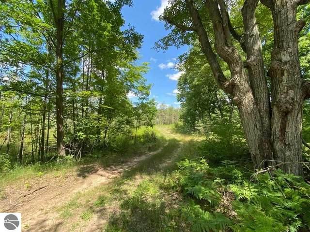 xx Old Orchard Trail, Coleman, MI 48618 (MLS #1890679) :: CENTURY 21 Northland