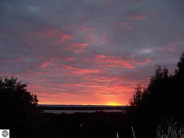 0000 Maple View Drive, Central Lake, MI 49622 (MLS #1890774) :: CENTURY 21 Northland