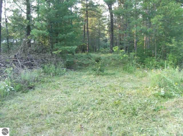 00 Shoreward Trail, South Branch, MI 48761 (MLS #1890874) :: Boerma Realty, LLC