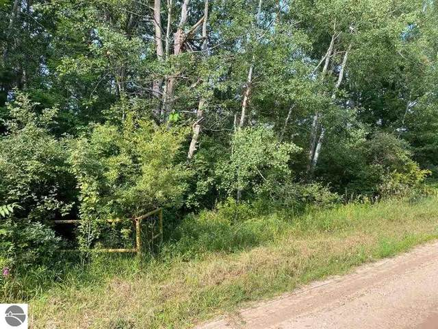 Norconk Road, Bear Lake, MI 49614 (MLS #1890883) :: Team Dakoske   RE/MAX Bayshore