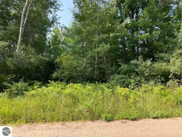 2 Acres Norconk Road, Bear Lake, MI 49614 (MLS #1890885) :: Team Dakoske   RE/MAX Bayshore