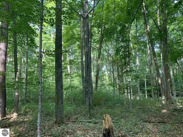 S Benzonia Trail, Empire, MI 49630 (MLS #1890896) :: Boerma Realty, LLC