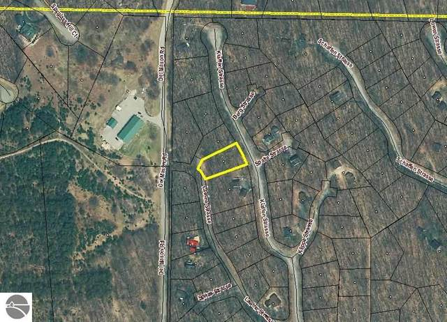 TBD Lawine Strasse, Bellaire, MI 49615 (MLS #1891243) :: Boerma Realty, LLC