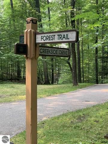35 Forest Trail, Bellaire, MI 49615 (MLS #1891453) :: Team Dakoske | RE/MAX Bayshore