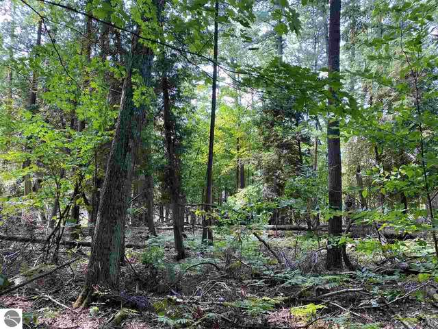 Lot 9 S Micheals Woods Trail, Maple City, MI 49664 (MLS #1892921) :: Team Dakoske | RE/MAX Bayshore
