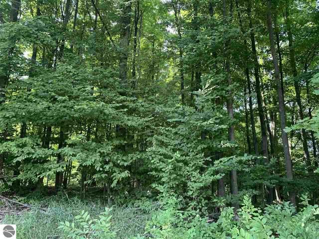 B2 White Pine Trail, Alden, MI 49612 (MLS #1892959) :: CENTURY 21 Northland