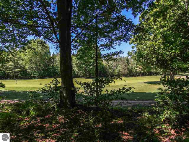 000-Unit 40 Mountain Woods Drive, Thompsonville, MI 49683 (MLS #1893205) :: Team Dakoske | RE/MAX Bayshore