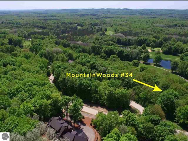 000-Unit 34 Woodspath Way, Thompsonville, MI 49683 (MLS #1837109) :: Brick & Corbett