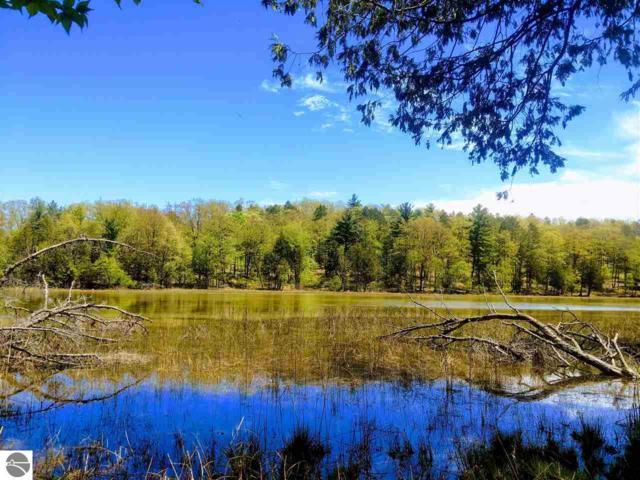 4972 Truax Lake Road, Williamsburg, MI 49690 (MLS #1859188) :: Brick & Corbett