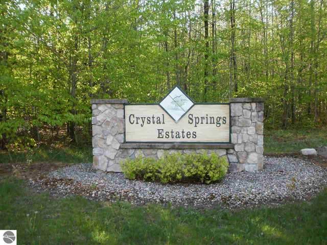 Spring Valley Drive, Cadillac, MI 49601 (MLS #1859720) :: CENTURY 21 Northland