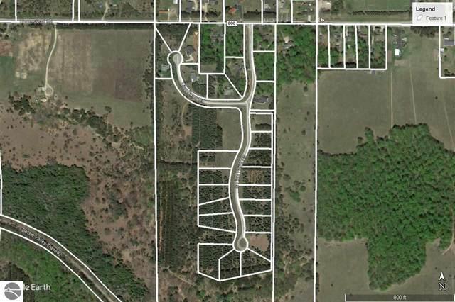Lot 17 Lipp Farm Road, Benzonia, MI 49616 (MLS #1866334) :: Boerma Realty, LLC