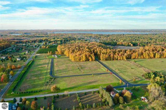 LOT 11 Pleasant Hill Drive, Cadillac, MI 49601 (MLS #1868739) :: Boerma Realty, LLC