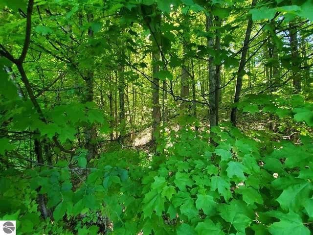 1316 Elk Run, Traverse City, MI 49696 (MLS #1871283) :: Boerma Realty, LLC