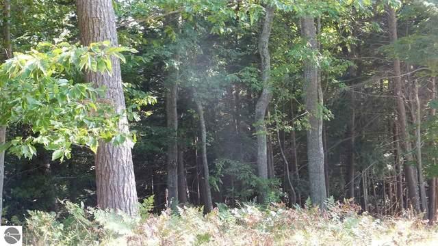 4 White Birch Trail, Beulah, MI 49617 (MLS #1876621) :: Michigan LifeStyle Homes Group