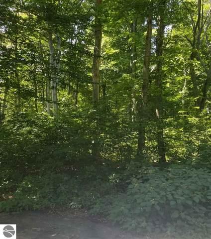 5400 Wild Berry Trail, Traverse City, MI 49684 (MLS #1877995) :: Michigan LifeStyle Homes Group