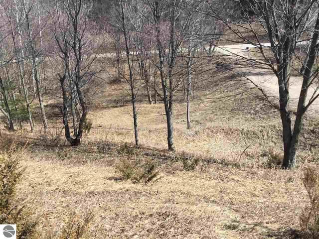5410 W View Ridge, Glen Arbor, MI 49636 (MLS #1885189) :: Boerma Realty, LLC