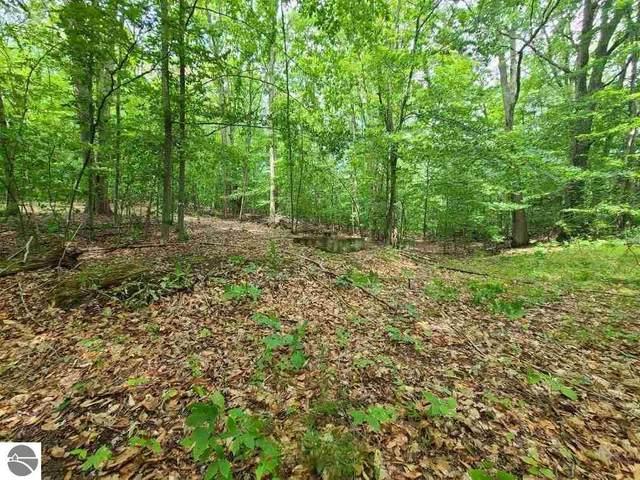 112 Logging Trail, Leroy, MI 49655 (MLS #1888813) :: Team Dakoske | RE/MAX Bayshore