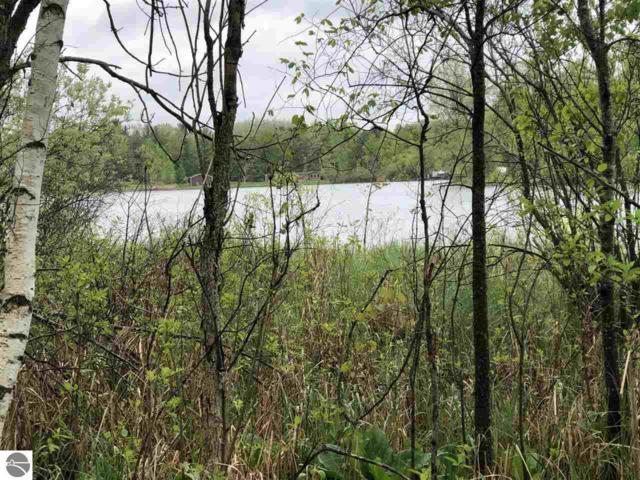 10787 NE Deaner Lake Drive, Vestaburg, MI 48891 (MLS #1857085) :: Boerma Realty, LLC