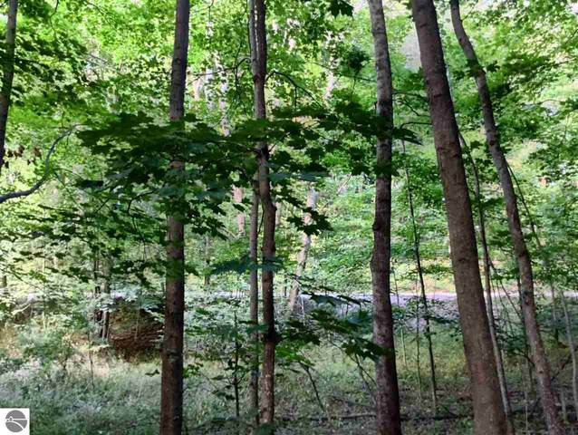 Lot 13 Stratton Lane, Elberta, MI 49628 (MLS #1866649) :: CENTURY 21 Northland