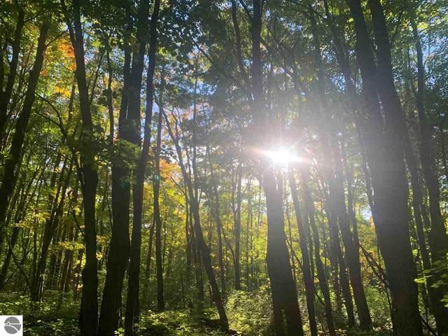 S Benzonia Trail, Empire, MI 49630 (MLS #1881602) :: Team Dakoske | RE/MAX Bayshore