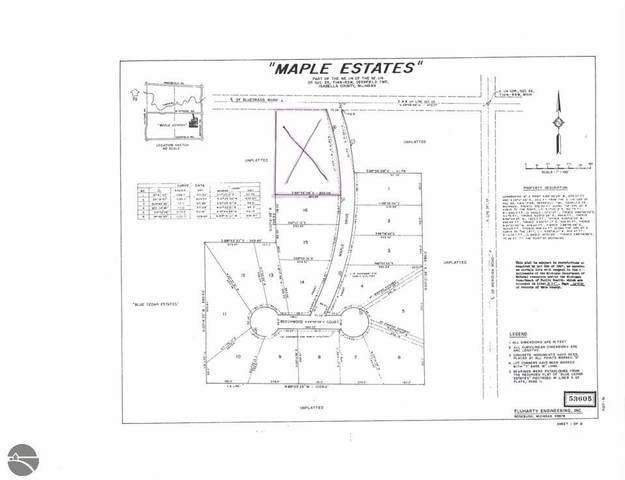 TBD W Maple Drive, Mt Pleasant, MI 48858 (MLS #1855792) :: Boerma Realty, LLC